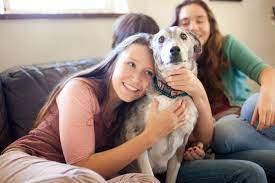 10 Hal Yang Dilakukan Orang Yang Tidak Bisa Ditahan Anjing